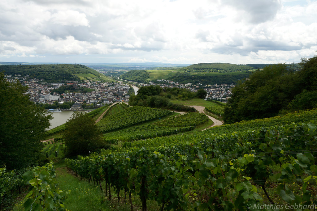 Rudesheim-15-August-2014-2058.jpg