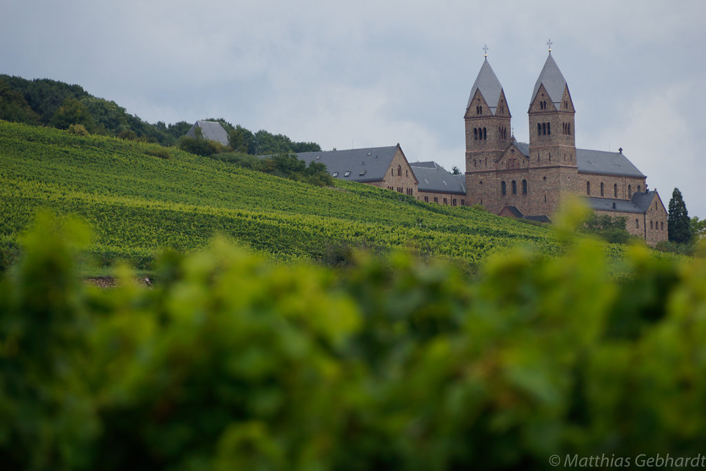Rudesheim-17-August-2014-2392.jpg